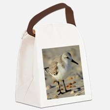 Funny Shore Canvas Lunch Bag
