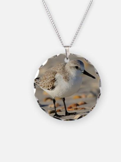 Unique Shells Necklace