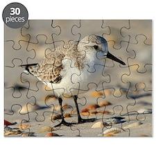 Cute Seabird Puzzle