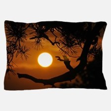 Full Moon at Sunset Pillow Case