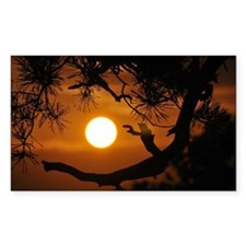 Full Moon at Sunset Decal