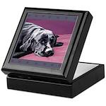 Black Labrador Beauty Sleep Keepsake Box