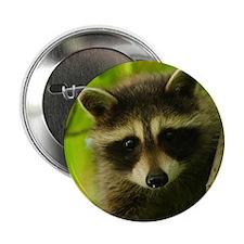 """Unique Raccoon 2.25"""" Button (10 pack)"""