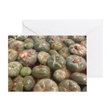 peyote buttons Greeting Card