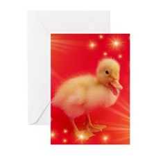 cute duck in red with small shining stars Greeting