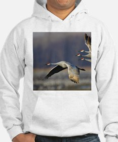 Cool Outdoor photography Hoodie