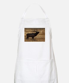 Unique Conservation Apron