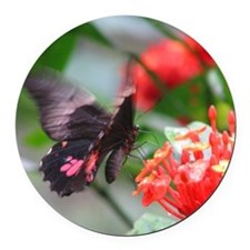 Butterfly Round Car Magnet