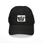 Gray Silkies Black Cap
