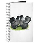 Gray Silkies Journal