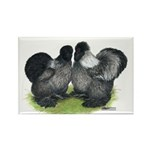 Gray Silkies Rectangle Magnet (10 pack)