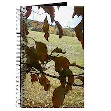 Cute Focal Journal