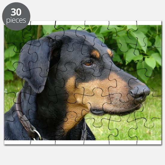 dobie 2 Puzzle