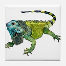 Unique Amphibians and reptiles Tile Coaster