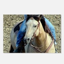 Unique Buckskin horse Postcards (Package of 8)