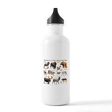 Mammals of Yellowstone Water Bottle