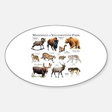 Mammals of Yellowstone National Par Decal