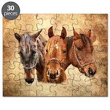 Cute Western Puzzle