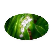 Lily of the Valley Oval Car Magnet