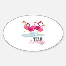 Team Flamingo Decal
