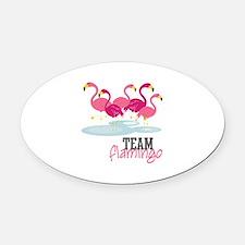 Team Flamingo Oval Car Magnet
