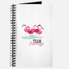 Team Flamingo Journal