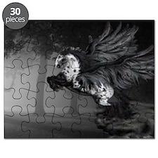 Pegasus Puzzle