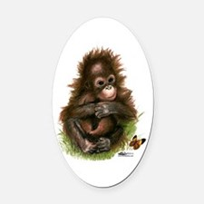 Orangutan Baby And Butterfly Oval Car Magnet