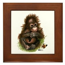 Orangutan Baby And Butterfly Framed Tile