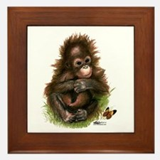 Orangutan Baby And Butterfly Framed Tile
