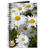 Daisy Journals & Spiral Notebooks