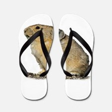 Cute Wild rabbit Flip Flops