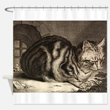 Cat, Mouse Vintage Art Shower Curtain