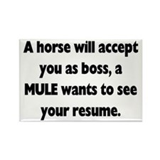 A horse will accept you as boss, Magnets