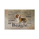 Beagle Magnets