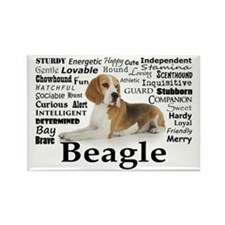 Beagle Traits Rectangle Magnet