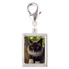 Unique Cat Silver Portrait Charm