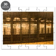 Unique Nyc subway trains Puzzle