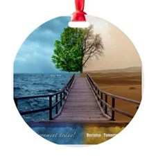 waterdesert Ornament