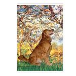 Spring & Golden (#12) Postcards (Package of 8)