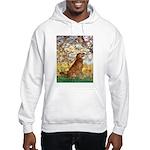 Spring & Golden (#12) Hooded Sweatshirt