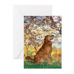 Spring & Golden (#12) Greeting Cards (Pk of 10)