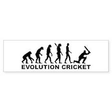 Evolution Cricket Car Sticker