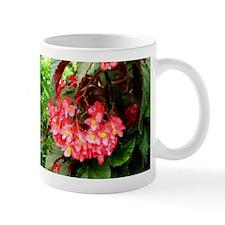 Begonia Beauty Mugs