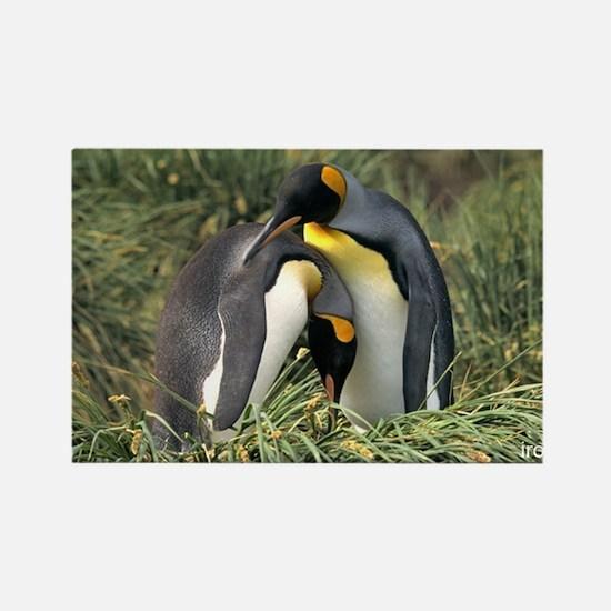 penguincuddleMUG Magnets