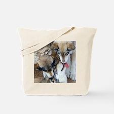 Wolf Greetings Tote Bag