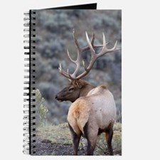 Funny Animals in the wild Journal