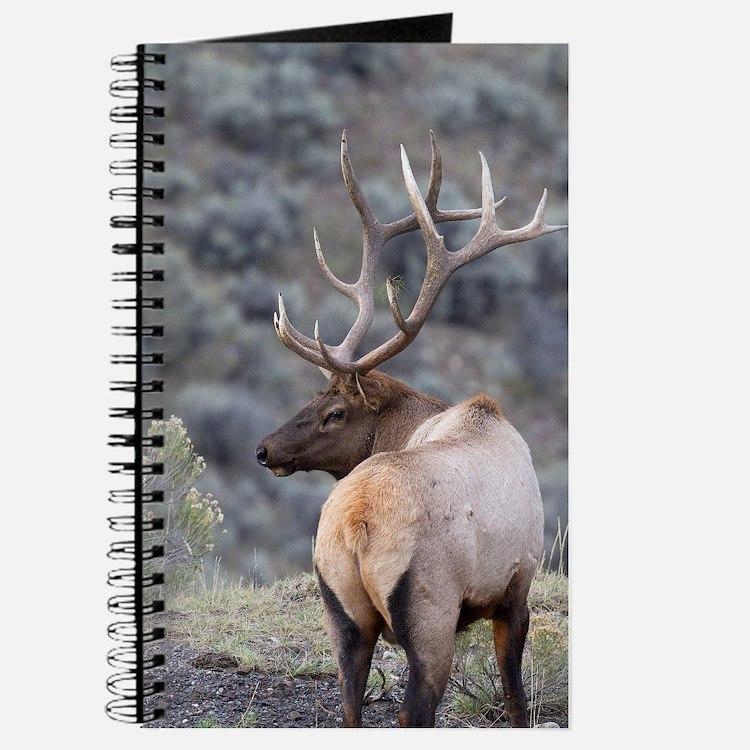 Cute Outdoorsmen Journal