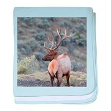 Cute Elk baby blanket
