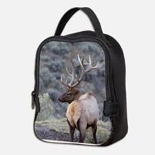 Cool Nature Neoprene Lunch Bag